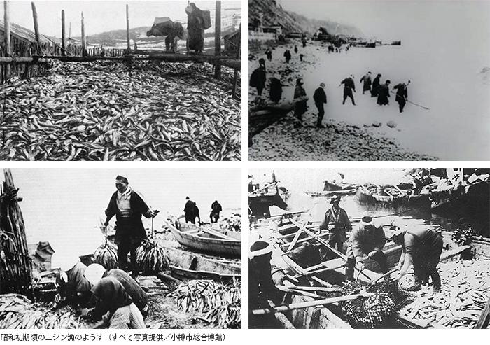 昭和初期頃のニシン漁のようす(すべて写真提供/小樽市総合博館)